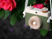 12th Jun 2019 - Little Wooden Toy Camera