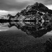 Bow Lake, Alberta B&W