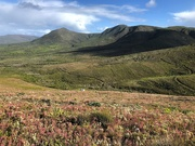 12th Jun 2019 - Walking trail view