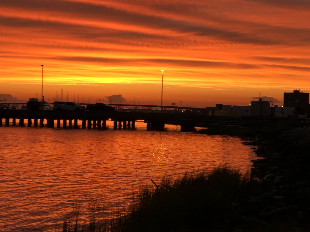 Spectacular sunset along the Battery in Charleston  by congaree