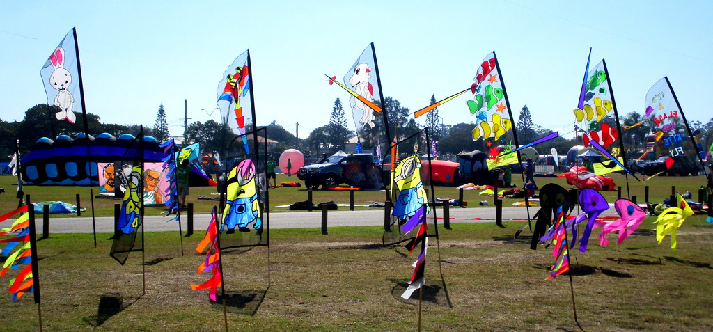 Kite Fest at Redcliffe   SE Queensland by 777margo