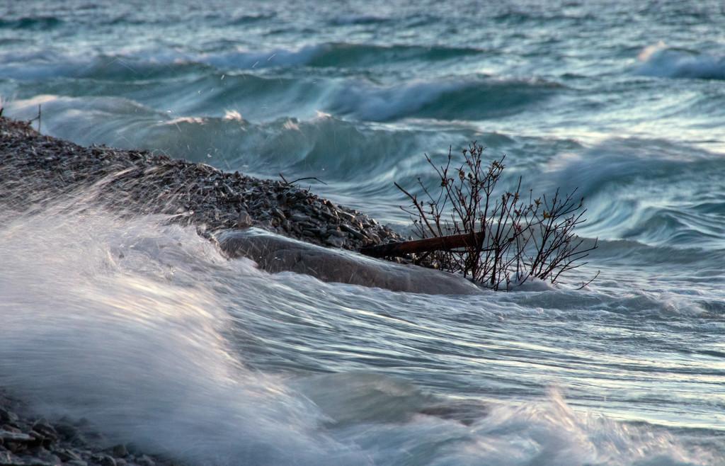 Lake Michigan by susanharvey