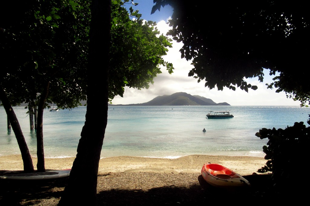 From rainforest to beach by robz
