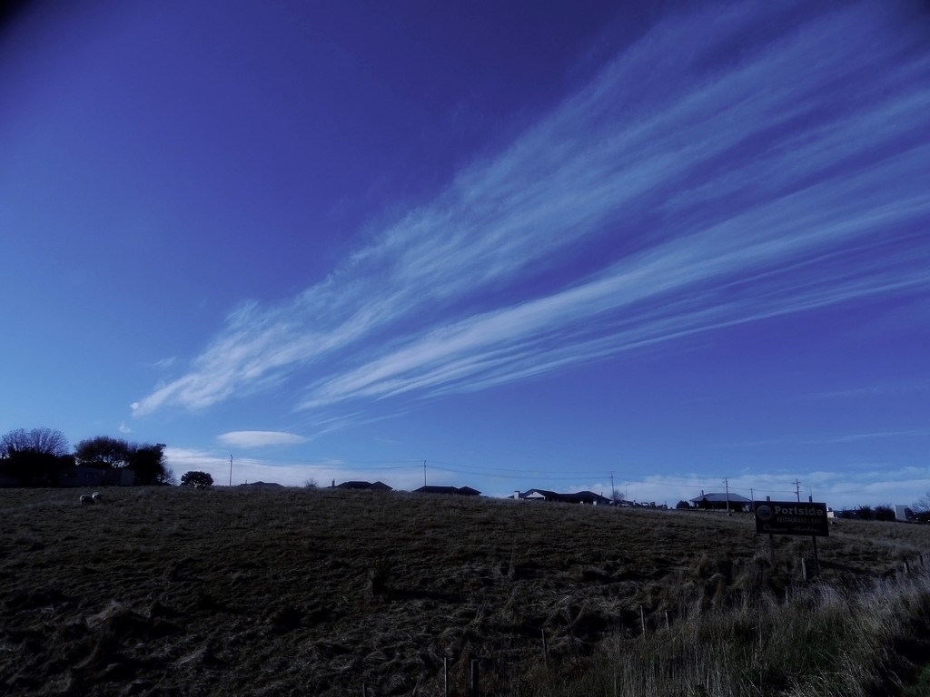 Trails by maggiemae