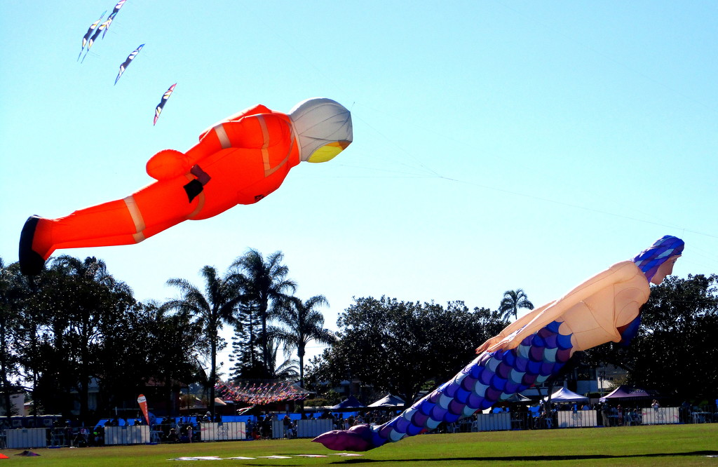 Inflated kite lift off at the  Kite Fest by 777margo
