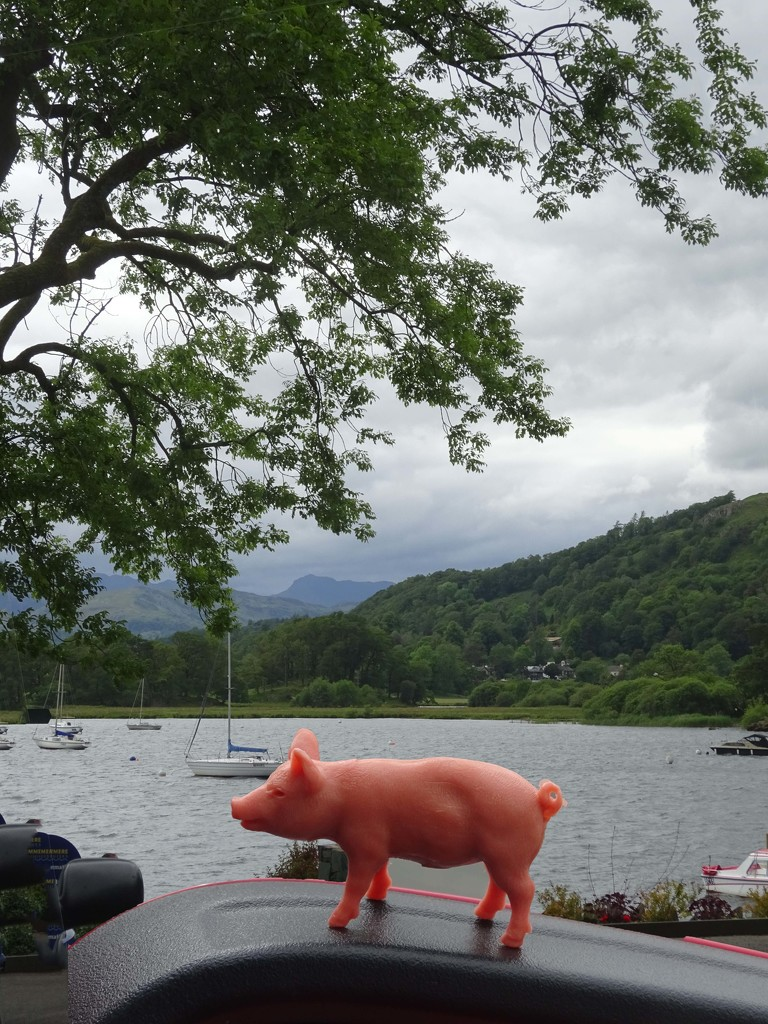 piglet goes to Waterhead in two parts by anniesue