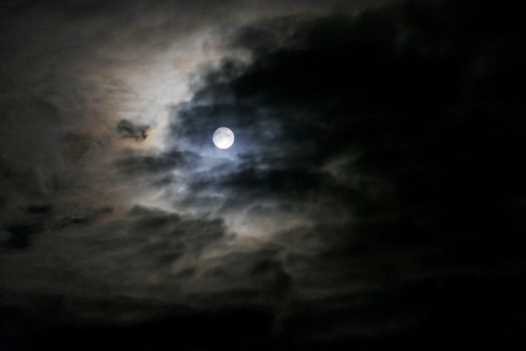 I'll meet you at midnight..... by carole_sandford