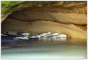 18th Jun 2019 - Dolphins in the Cave..