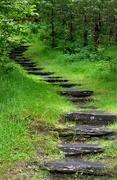 18th Jun 2019 - Stairway to ........