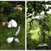 Sculptures at Borde Hill Garden