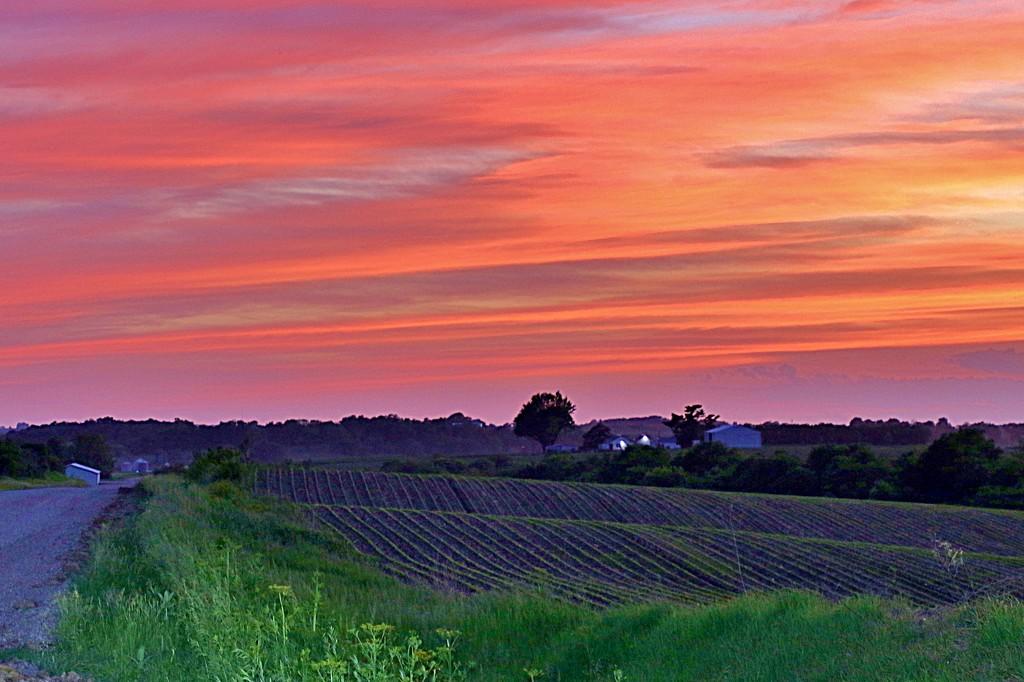 Farmland Sunset by lynnz