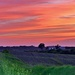 Farmland Sunset by lynnz