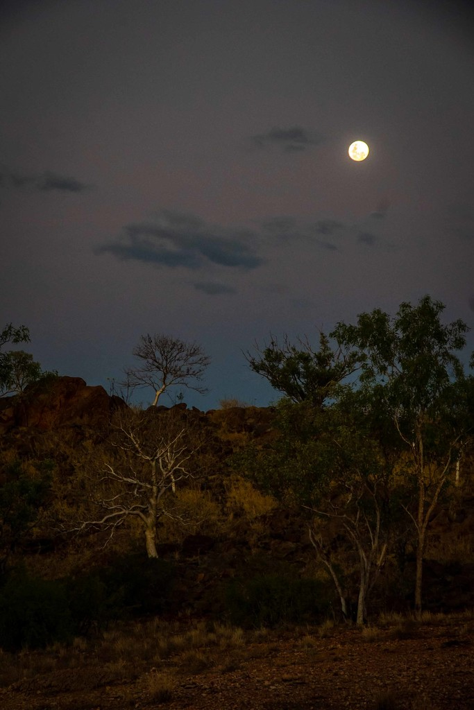 Moonrise over the Bungle Bungle by pusspup