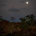 Moonrise over the Bungle Bungle