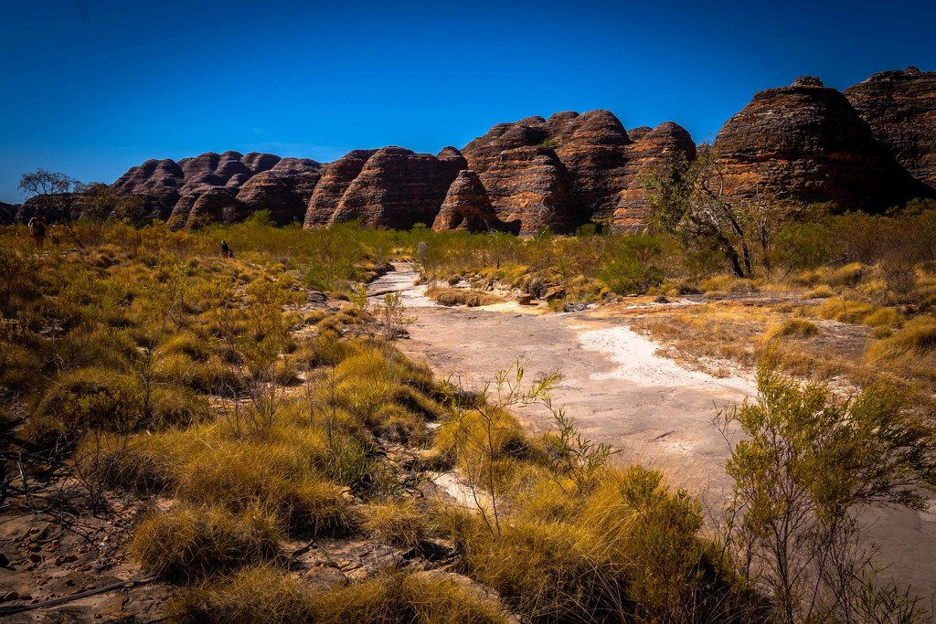 Bungle bungle domes and spinifex by pusspup