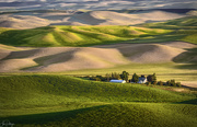 20th Jun 2019 - Farm Nestled In the Hills Of the Palouse