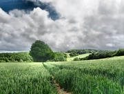 21st Jun 2019 - This green and pleasant land