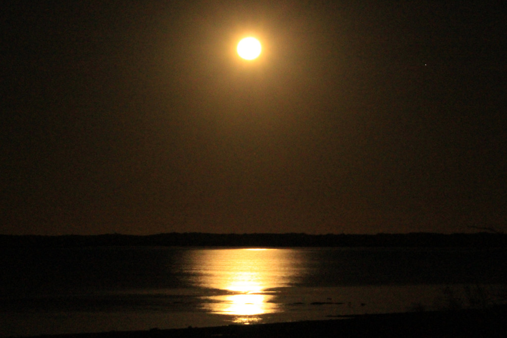 Full Moon at Onslow by leestevo