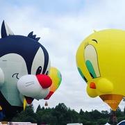 22nd Jun 2019 - Tigard Hot Air Balloons