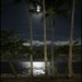 Moonlight over Palm Cove