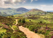22nd Jun 2019 - Conwy Mountain