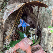 22nd Jun 2019 - Fairy Houses today