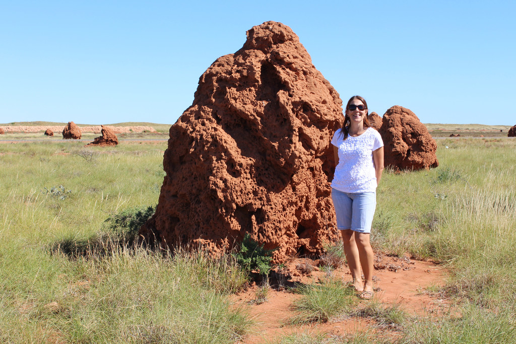 Termite Mounds by leestevo