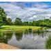 The Lake,Abington Park