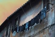 23rd Jun 2019 - Hanging laundry