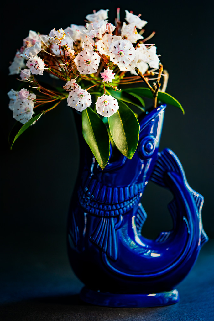 gurgling cod pitcher by jernst1779