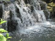 23rd Jun 2019 - Waterfall