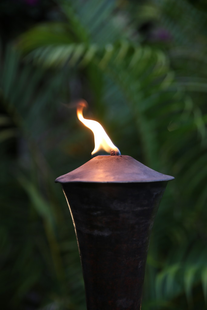 Oil Lamp by phil_sandford