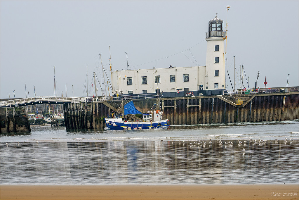 Returning to Whitby by pcoulson