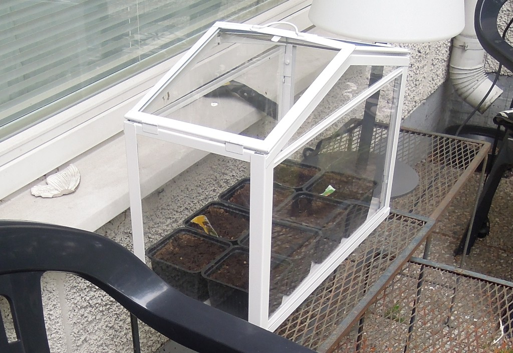 Mini Greenhouse by octogenarian