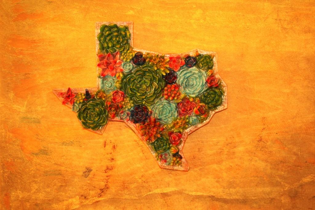 Texas by judyc57