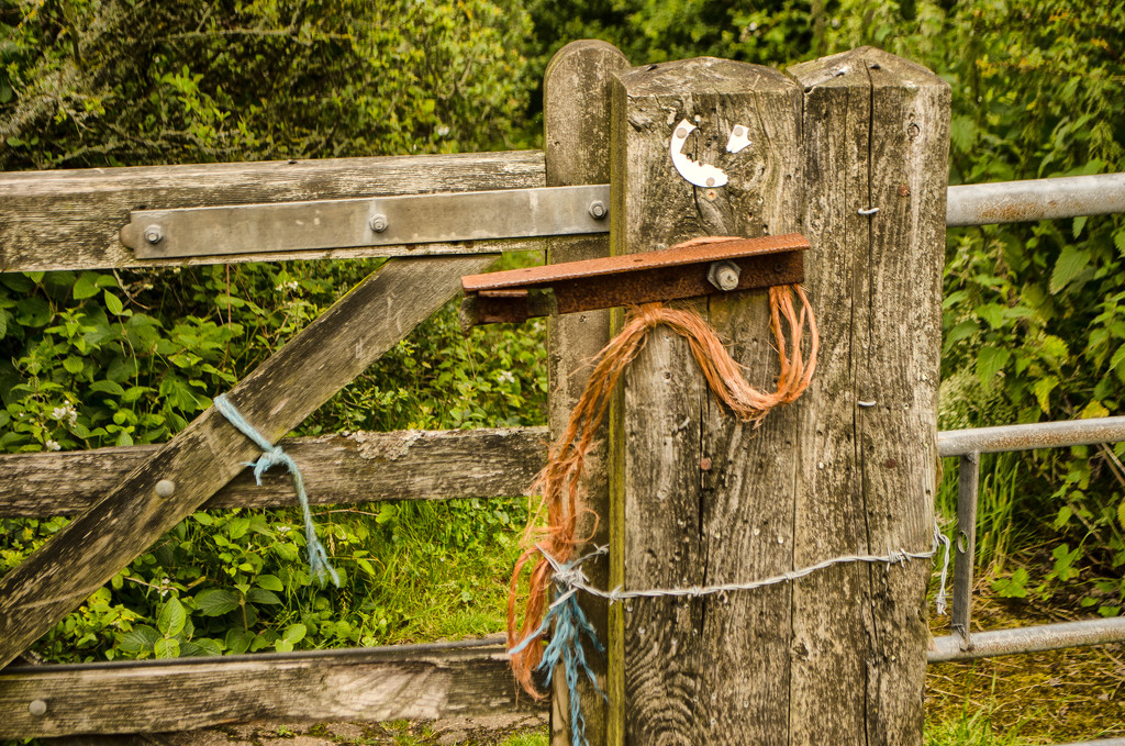 An Old Gate by fbailey