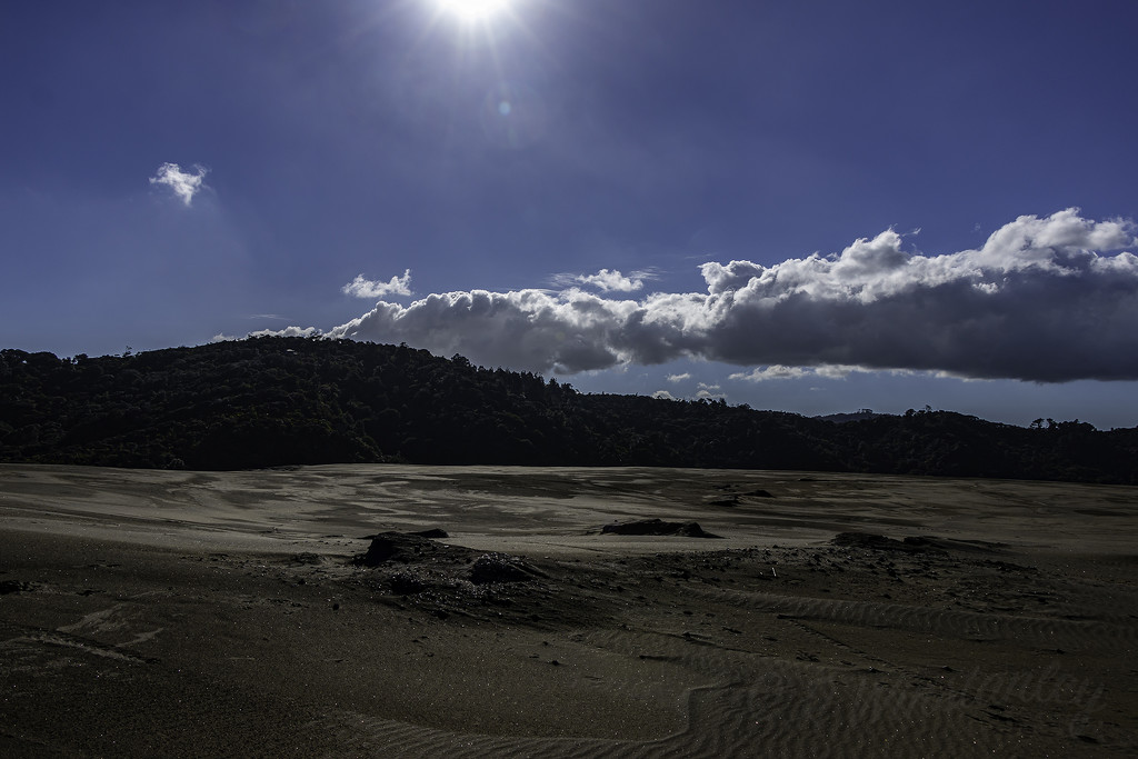 Along the Dunes by kipper1951