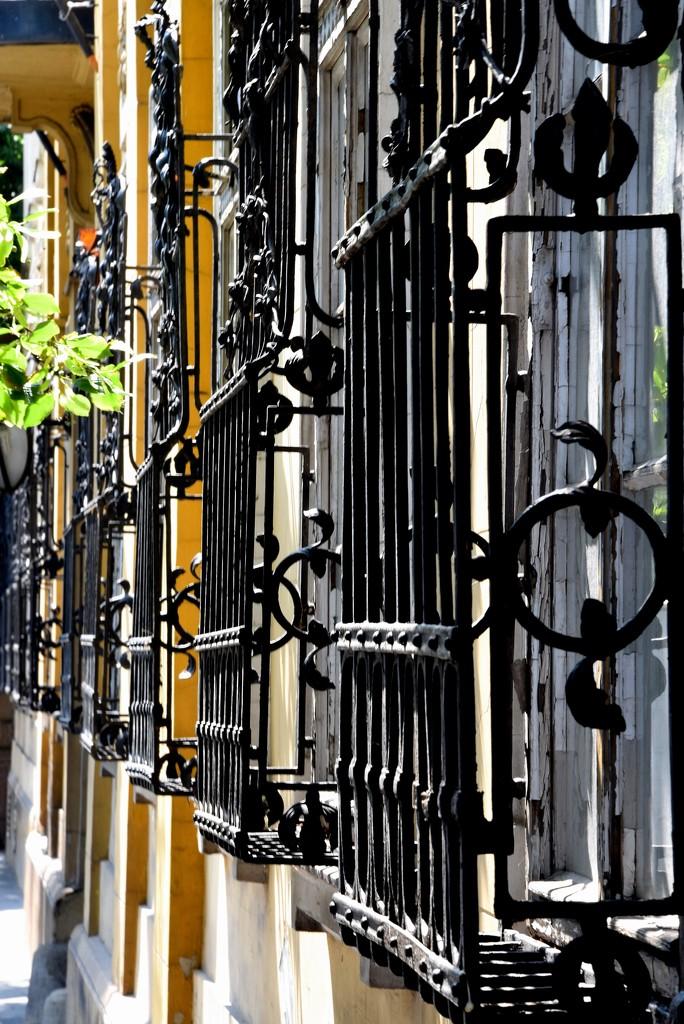 Window Grids by kork