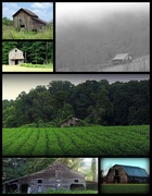 28th Jun 2019 - My favorite barns in a collage