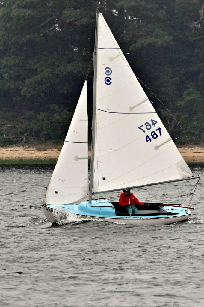Saturday sailing. by sailingmusic
