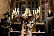 29th Jun 2019 - Hogwarts Great Hall