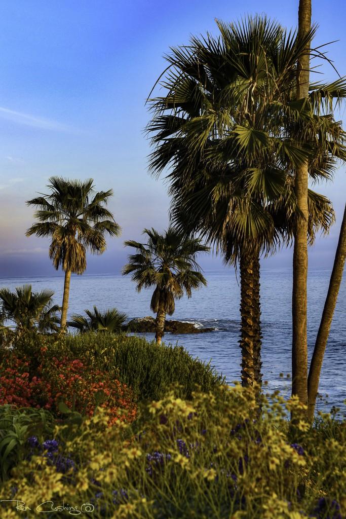 Laguna Coastline by stray_shooter