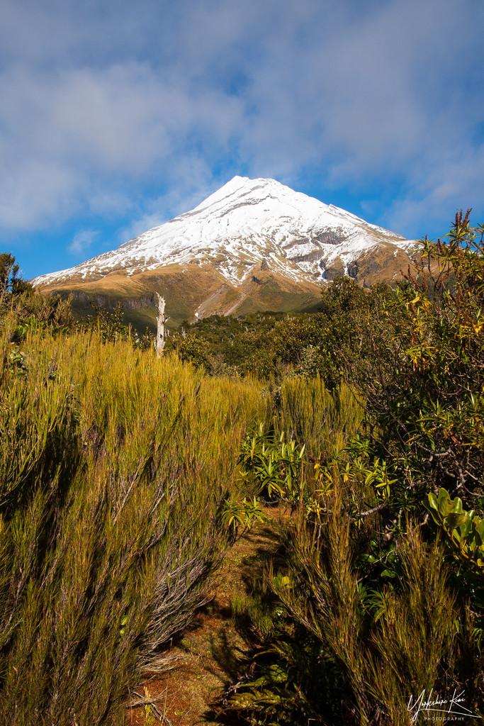 Mt Taranakii by yorkshirekiwi