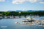 27th Jun 2019 - Goodbye Oslo