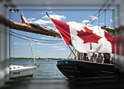 1st Jul 2019 - Canada day