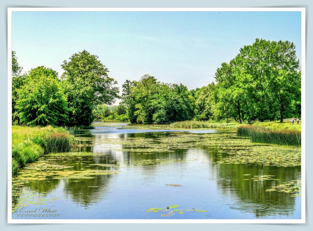 Lake and Reflections,Stowe Gardens by carolmw