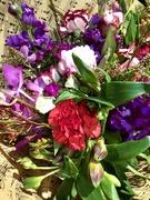 3rd Jul 2019 - Farewell flowers