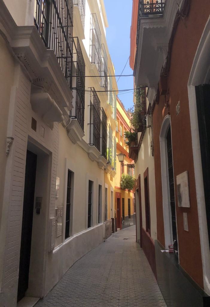 Seville  by loweygrace