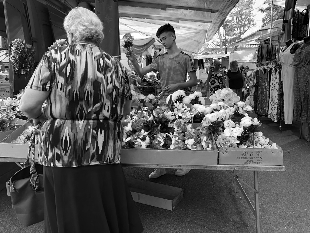 Market day in Roccastrada by angelikavr