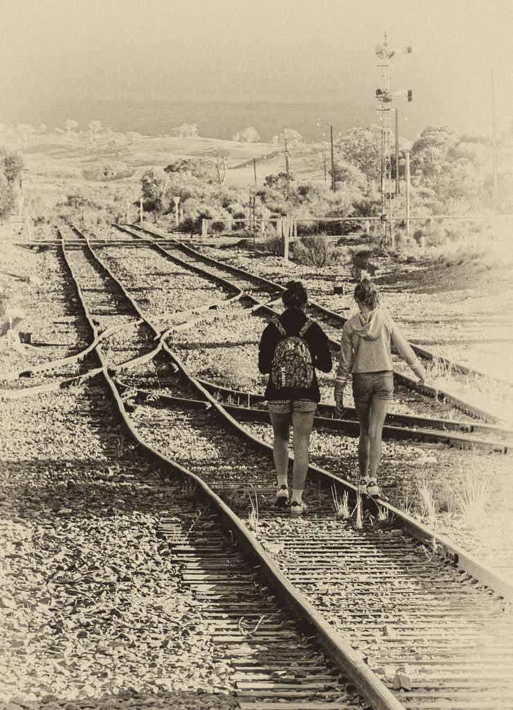 On the rails by golftragic